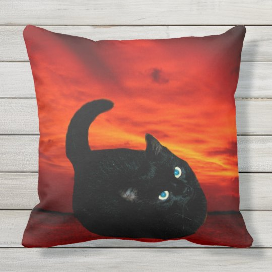Cat and Red Sky Throw Pillow