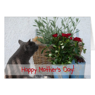 Cat and Roses Happy Mother's Day! Card