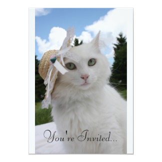 """Cat and the Hat 5"""" X 7"""" Invitation Card"""