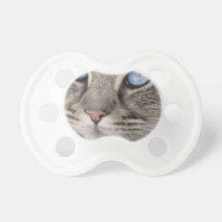 Cat Animal Cat Portrait Cat's Eyes Tiger Cat Pacifier