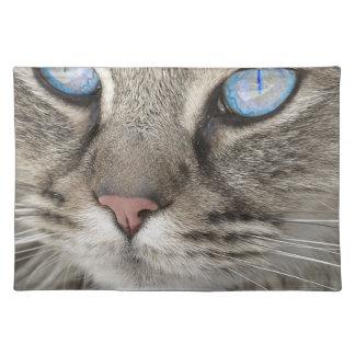 Cat Animal Cat Portrait Cat's Eyes Tiger Cat Placemat