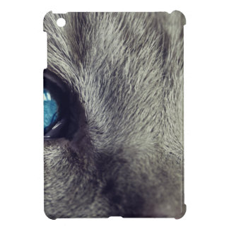 Cat Animal Cat's Eyes Eyes Pet View Blue Eye Cover For The iPad Mini