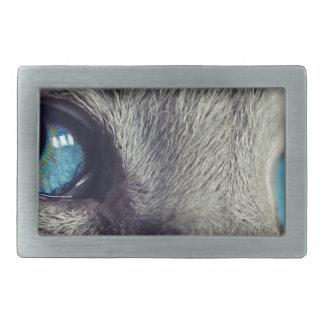 Cat Animal Cat's Eyes Eyes Pet View Blue Eye Rectangular Belt Buckle