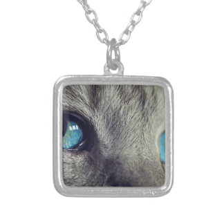 Cat Animal Cat's Eyes Eyes Pet View Blue Eye Silver Plated Necklace