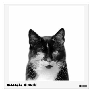 Cat animal photography pet black and white wall sticker