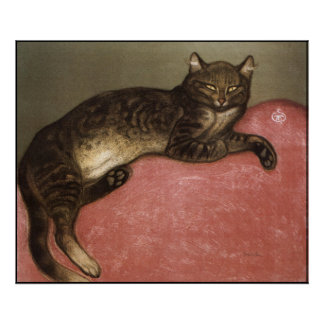 Cat Art Poster/Print: Stretched Cat by Steinlen Poster