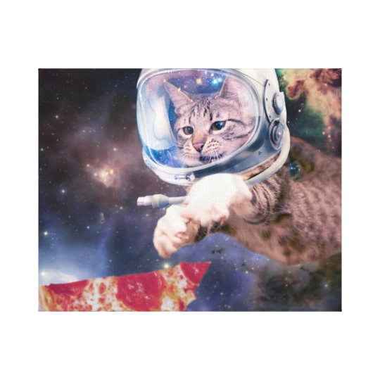 cat astronaut - funny cats - cats in space canvas print