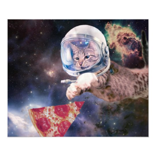 cat astronaut - funny cats - cats in space photograph