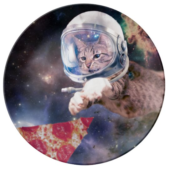 cat astronaut - funny cats - cats in space porcelain plate