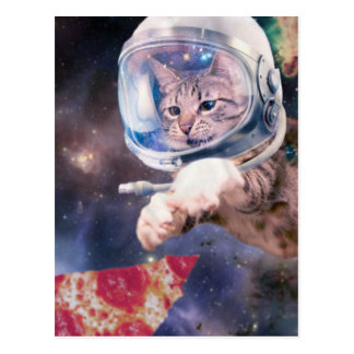 cat astronaut - funny cats - cats in space postcard