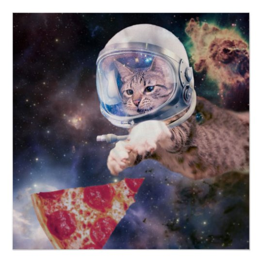 cat astronaut - funny cats - cats in space poster