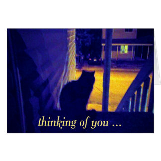 Cat at Night Old Neighbourhood Thinking of You Card