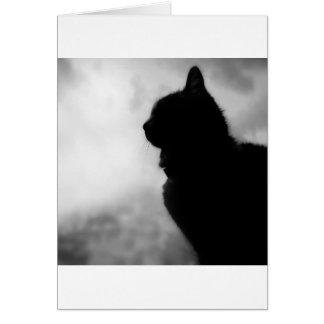 Cat ate Night Feline Animal cap Cat Puss Pussy Card