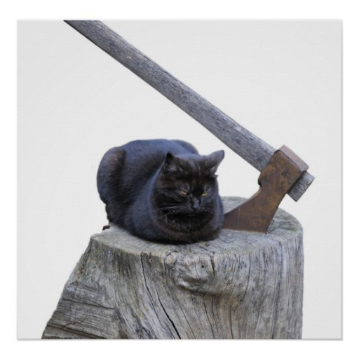 cat, axe and life poster