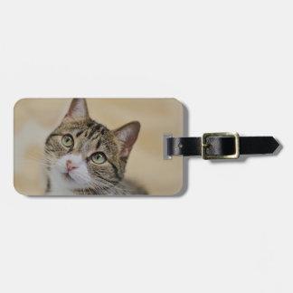 cat bag tag