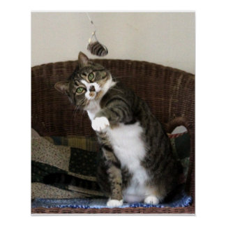 Cat Batting Mouse Poster