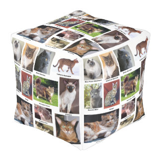 Cat Breeds Full Color Photo Design Pouf