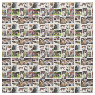 Cat Breeds Full Color Photo Fabric