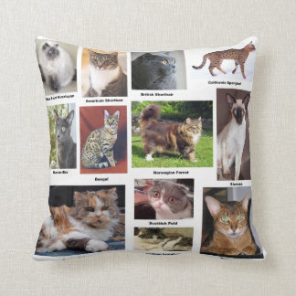 Cat Breeds Full Color Photo Pillows