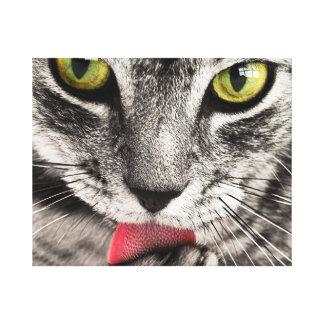 Cat Canvas 50.80cm x 40.64cm, 3.81cm