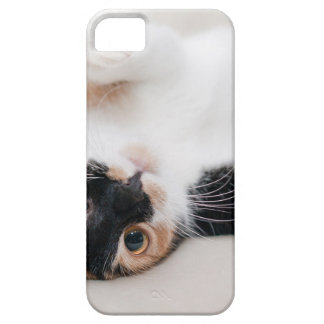 cat case for the iPhone 5