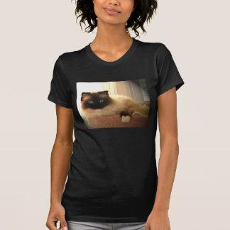 Cat Cats Ragdoll Ragdolls Kitty T-Shirt