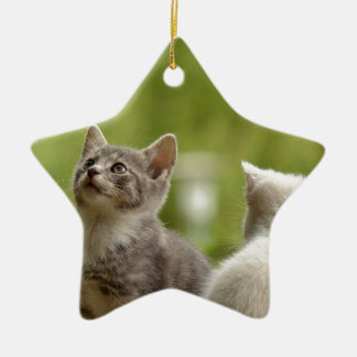 cat ceramic ornament