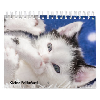 Cat child/skin ball calendar