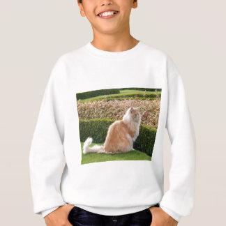 Cat clothes!!!! sweatshirt
