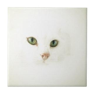 Cat Cloud Tile
