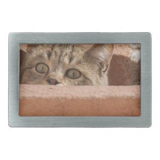 Cat Curious Young Cat Cat's Eyes Attention Wildcat Rectangular Belt Buckle