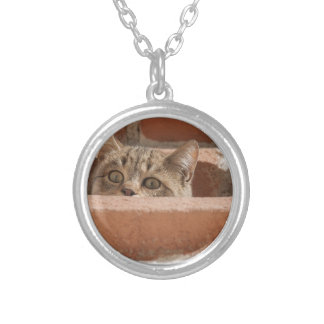 Cat Curious Young Cat Cat's Eyes Attention Wildcat Silver Plated Necklace