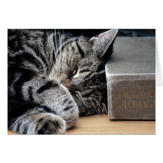 Cat Curled Up with a Good Book Card