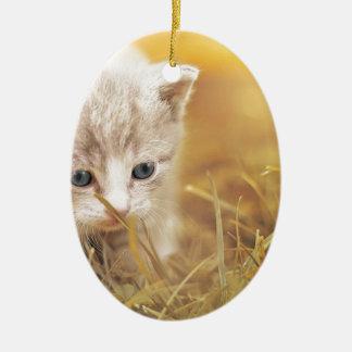 Cat Cute Cat Baby Kitten Pet Animal Charming Ceramic Ornament