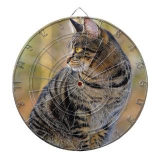 cat dartboard
