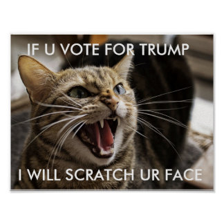 cat doesnt want trump poster