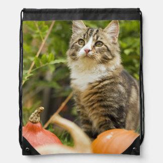 Cat Drawstring Bags