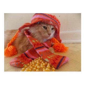 cat dress up Postcard