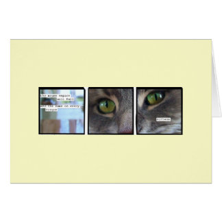 Cat Empire Card