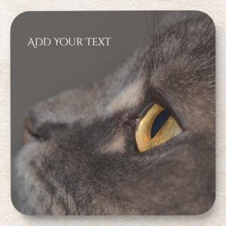 Cat Eye-Macro by Shirley Taylor Coaster