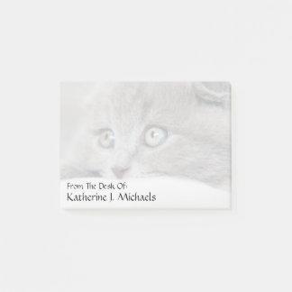 Cat Eyes Post-it Notes