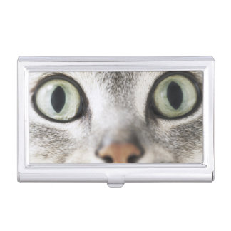 Cat face business card holder