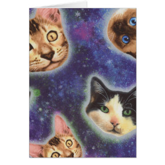 cat face - cat - funny cats - cat space card