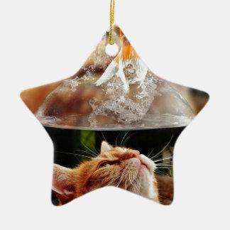 Cat Face Goldfish Glass Close View Eyes Portrait Ceramic Ornament
