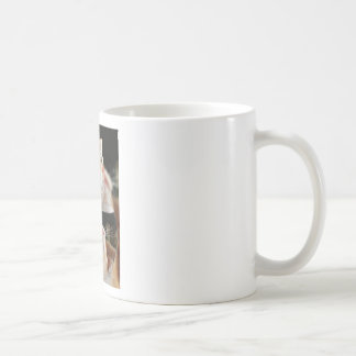 Cat Face Goldfish Glass Close View Eyes Portrait Coffee Mug