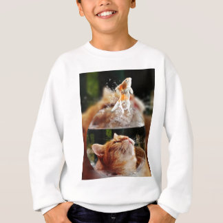 Cat Face Goldfish Glass Close View Eyes Portrait Sweatshirt