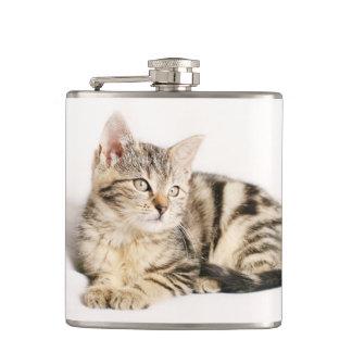 cat flasks