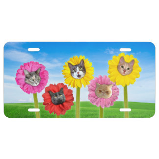 """Cat Flowers"" Garden LOL Funny License Plate"