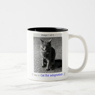 Cat for Adaptation Internet Art Mug
