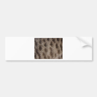 CAT FUR BUMPER STICKER